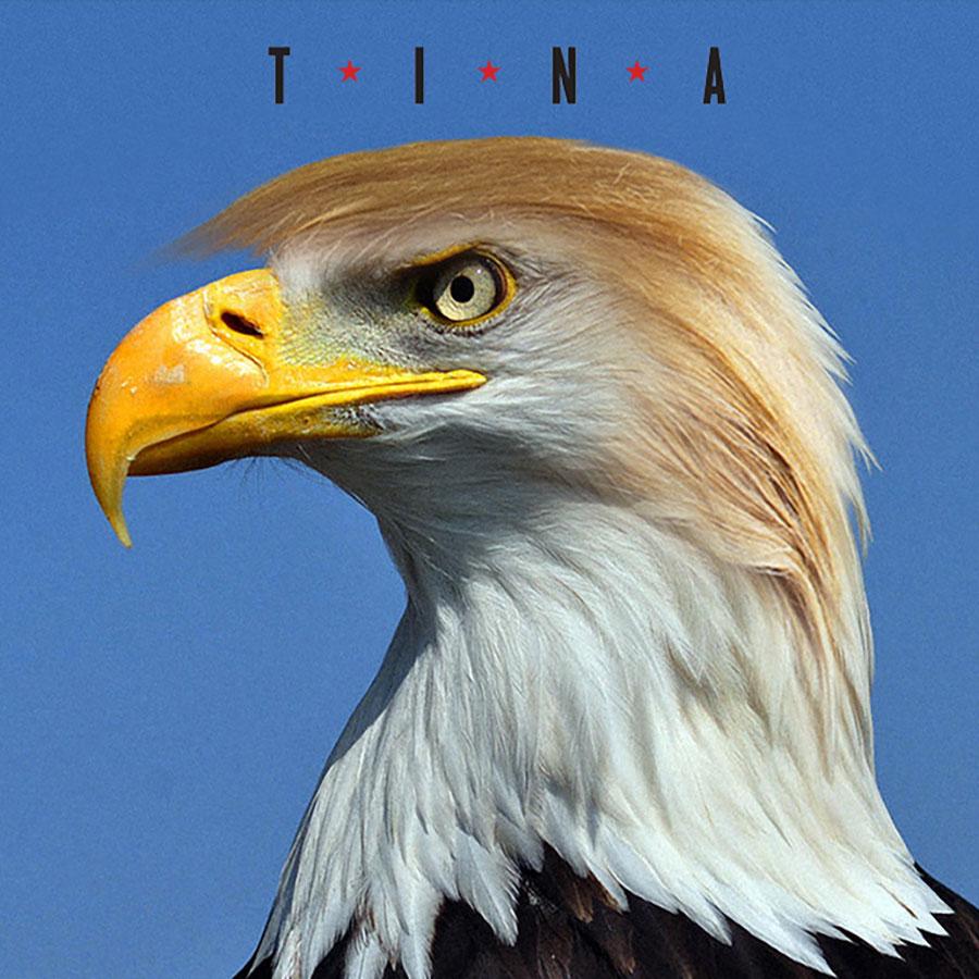 TRUMP_Eagle